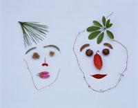 木の実と葉の顔