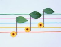 花で作った音符 フォトイラスト