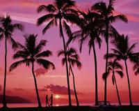 夕景の海辺を歩くカップルと車のシルエット ハワイ