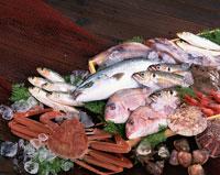 魚介類の集合 02022038808| 写真素材・ストックフォト・画像・イラスト素材|アマナイメージズ