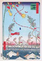 江戸百景 市中繁榮七夕祭 02022347425| 写真素材・ストックフォト・画像・イラスト素材|アマナイメージズ