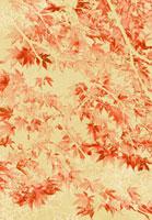 紅葉の和風イメージ