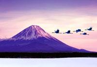 富士山とタンチョウヅル