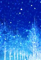 クリスマスツリーのイメージ 02022349321| 写真素材・ストックフォト・画像・イラスト素材|アマナイメージズ