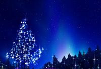光るクリスマスツリーのある夜景