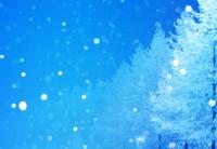 クリスマスのブルーイメージ 02022349354| 写真素材・ストックフォト・画像・イラスト素材|アマナイメージズ