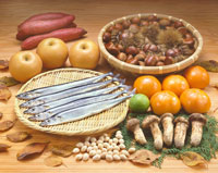 秋の食材 02050012694| 写真素材・ストックフォト・画像・イラスト素材|アマナイメージズ