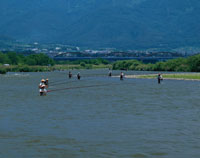 千曲川のアユ釣  長野県