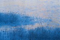 奥日光の沼の風景 11月 栃木県