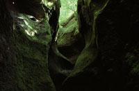 苔の洞門      支笏湖周辺 北海道 7月