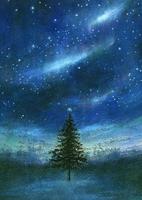 オーロラ光る夜空とツリー