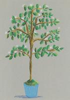 白い花の木と青い植木鉢
