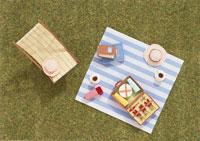 ミニチュアのピクニック 02119010064| 写真素材・ストックフォト・画像・イラスト素材|アマナイメージズ