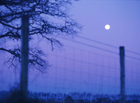 フェンスの上の満月