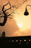 街路樹と城壁 02122010318| 写真素材・ストックフォト・画像・イラスト素材|アマナイメージズ