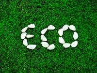 芝生の上のECOの文字を作った白い石