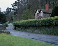 生垣のある家と小道 西部 イギリス