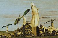 地面に生えた芽 イラスト 02171010004| 写真素材・ストックフォト・画像・イラスト素材|アマナイメージズ