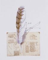 羽根とメモと図式