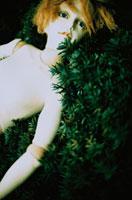 青い瞳の人形