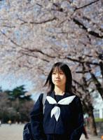 サクラの木と日本人女子学生