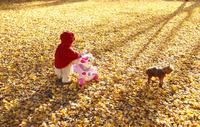 銀杏のじゅうたんで遊ぶ女の子 02208001962| 写真素材・ストックフォト・画像・イラスト素材|アマナイメージズ