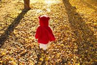 銀杏のじゅうたんで遊ぶ女の子 02208002013| 写真素材・ストックフォト・画像・イラスト素材|アマナイメージズ