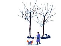 雪の公園を犬の散歩をする婦人・冬