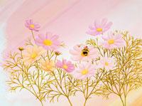 コスモスの花の中で眠る妖精(秋) 02237002531  写真素材・ストックフォト・画像・イラスト素材 アマナイメージズ