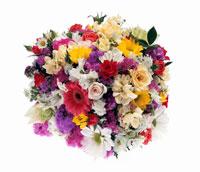 白や桃色や紫の花と恐竜の花束