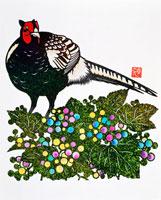 秋の果実ノブドウを見るキジ 02237007452| 写真素材・ストックフォト・画像・イラスト素材|アマナイメージズ