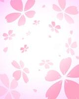 桜と光のイメージ