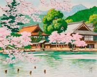 水彩「京の四季」 桜の大覚寺 右京
