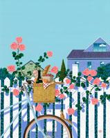 白い柵にバラと自転車籠にパンとワイン