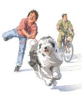 犬の散歩 02237012100| 写真素材・ストックフォト・画像・イラスト素材|アマナイメージズ
