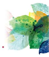 川のほとり 秋の葉 02237012400| 写真素材・ストックフォト・画像・イラスト素材|アマナイメージズ