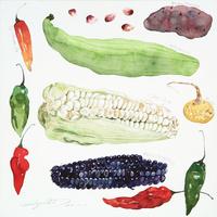 ペルーの野菜