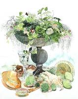 花瓶に生けられたハーブと貝殻