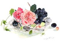ガラス皿にバラの花とブドウ 02237013539| 写真素材・ストックフォト・画像・イラスト素材|アマナイメージズ