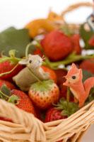 籠に入ったイチゴと動物