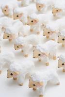 羊 02240000140| 写真素材・ストックフォト・画像・イラスト素材|アマナイメージズ