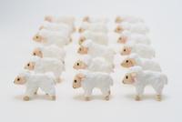 羊 02240000154| 写真素材・ストックフォト・画像・イラスト素材|アマナイメージズ
