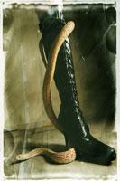 SM 黒いブーツとへび 02241000067| 写真素材・ストックフォト・画像・イラスト素材|アマナイメージズ