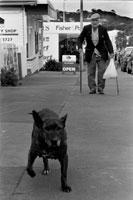 通りを歩く犬と外国人のシニア男性