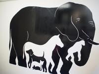 パズリング・ワールド 動物 02263000489| 写真素材・ストックフォト・画像・イラスト素材|アマナイメージズ