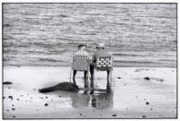 海辺に座る2人の老人 B/W ニューハンプシャー アメリカ 02265001979  写真素材・ストックフォト・画像・イラスト素材 アマナイメージズ
