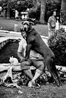 男性と犬 カンヌ フランス