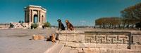4匹の犬 2000年4月 ラングドック・ルーション フランス