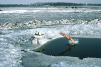 雪原と飛び込む男性 1985年 中国 02265006156| 写真素材・ストックフォト・画像・イラスト素材|アマナイメージズ
