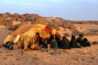 旱魃にテントを囲む人 1974年 アルジェリア